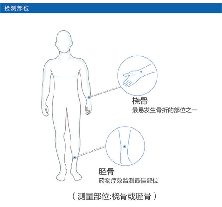 osteokj7000骨密度仪检测部位